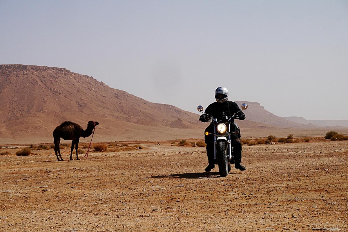 Suzuki Van Van Morocco (4). Disfrutando de Erg Chebbi